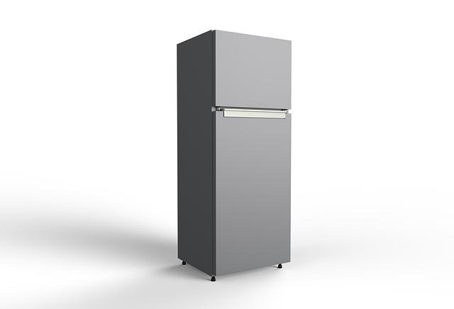 domácí lednice